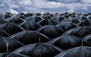 rain_umbrellas